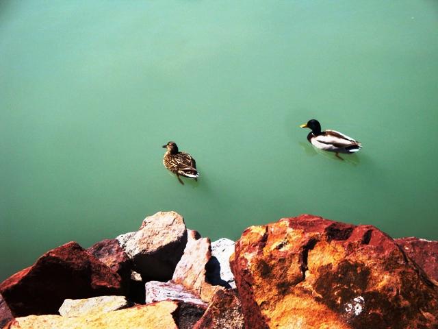 Balaton wspomnienia z wakacji
