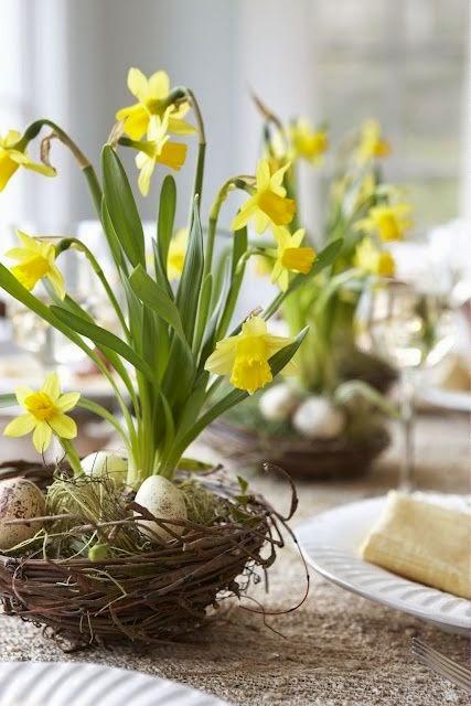 Wielkanoc tuż tuż wiosenne kwiaty