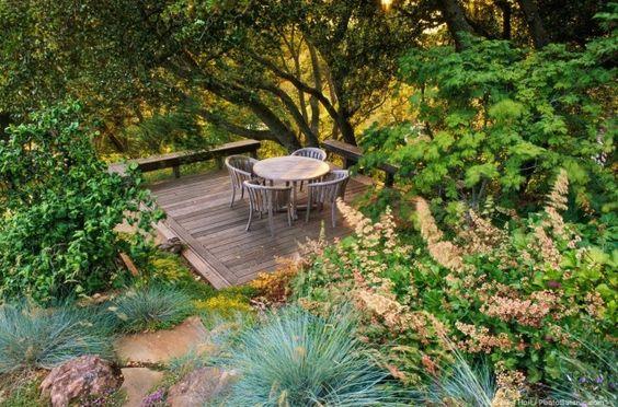 ogród naturalny jak pielęgnować