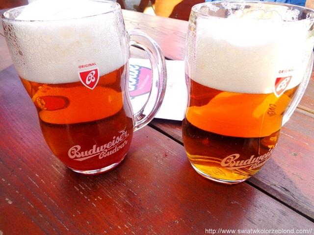 Czesi słyną z dobrej jakości piwa