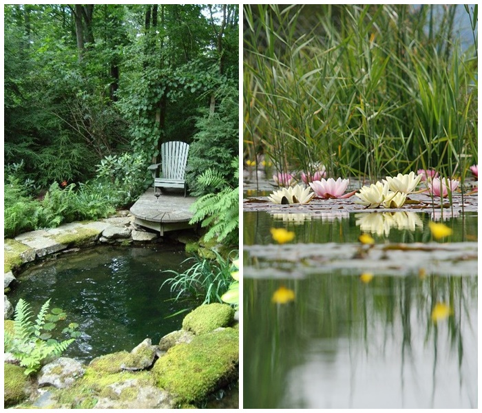zakładanie ogrodów, relaks w ogrodzie