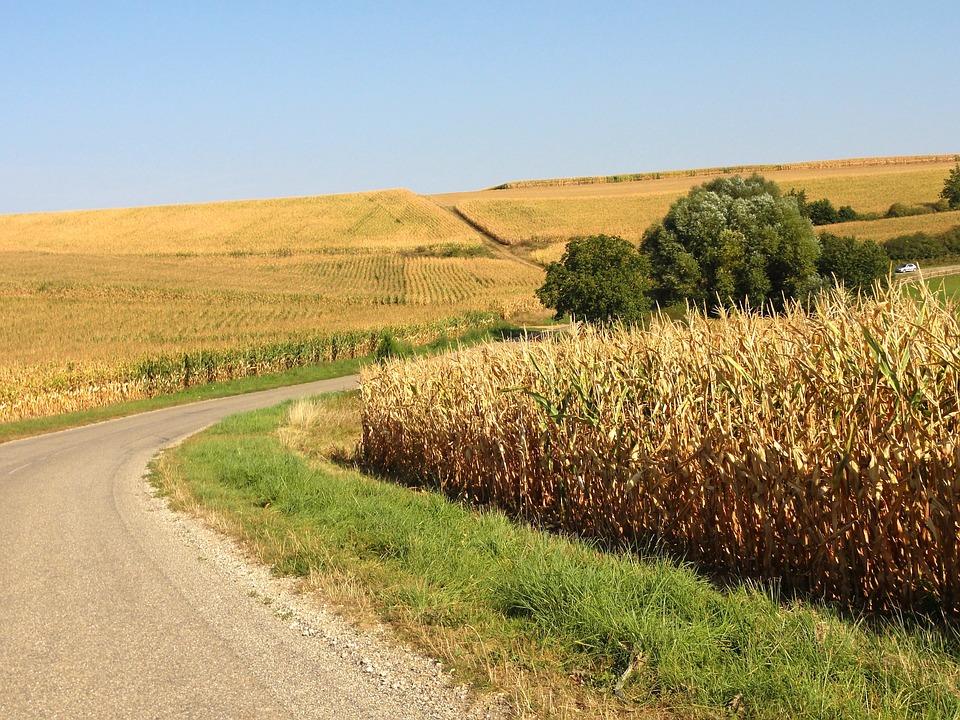 Odszkodowanie za wypadek w gospodarstwie rolnym